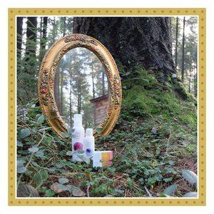 🌳Nuestra conexión: la tierra, nuestra inspiración: el bosque.🍁 Si como a nosotros, te gusta disfrutar del bosque en invierno, aprovecha estos días para nutrirte de estos pequeños placeres. Nunca se sabe que sorpresas te puedes encontrar. 🤗   #regalosecologicos #amapolabio #amapolabiocosmetics #regalaeco #compralocal #navidad #navidadamapola #cosmeticaecologica #cosmeticanatural #bellezaysalud #renuevatupiel