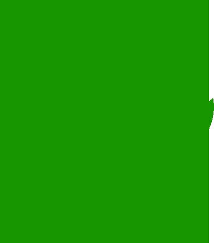 Con aceites vegetales ecológicos de primera presión en frío
