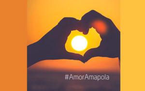 Amor amapola