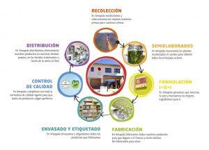 Procesos de fabricación - Amapola Biocosmetics - Cosmética Natural