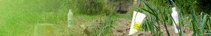 tira_cultiva - Amapola Biocosmetics